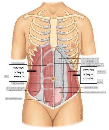 muscle strain treatment  sideline brian wilsons