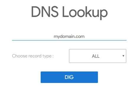 dns lookup  tool  dig   domain records
