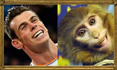 8 To Look Like This by 25 Footballers Who Look Like Animals