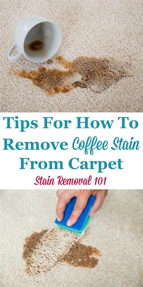how to remove stains from rugs how to remove coffee stain from carpet best accessories home 2017