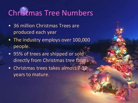 amazingly christmas tree facts to know