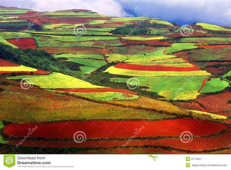 colorful hill colorful hill royalty free stock photography image 9773407