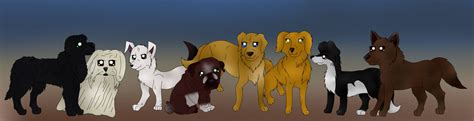 survivor dogs survivors dogs by summerflames on deviantart