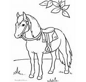 Coloring Pages Of Horse To Print 015