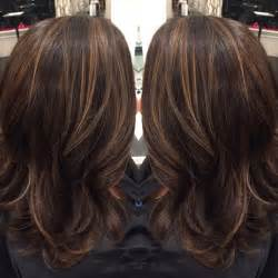 brown on hair fade brown hairs dark brown hair with caramel highlights and midlength hair
