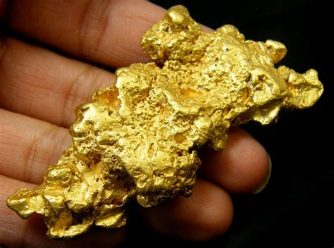 The Gold Nugget museum grade australian gold nugget 105 81grams lgn529