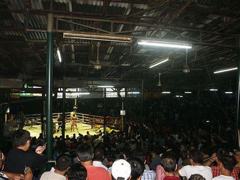 nonton film ong bak 3 gratis doyan film ong bak ayo nonton thai boxing di bangkok