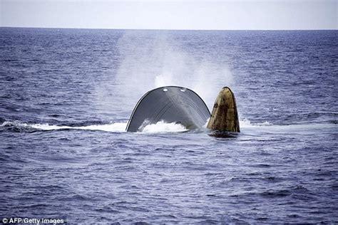 Sinking Suspicions marine activists save 40 strong crew of sinking ship