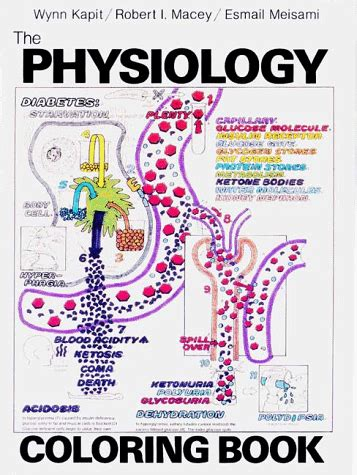 libro anatomy physiology coloring the physiology coloring book libri interattivi panorama auto