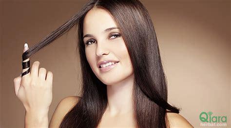 Harga Masker Rambut Makarizo Lidah Buaya manfaat lidah buaya untuk perawatan rambut herbal qiara