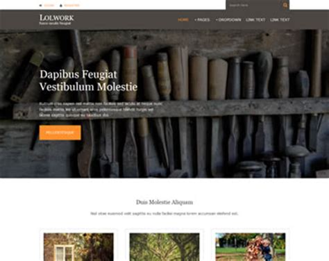 pro photo templates pro photo free psd website template psd templates os