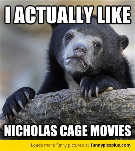 10 best confession bear memes funny pictures