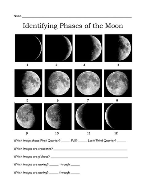 Moon Phases Worksheet Answers by Search Results For Phases Of The Moon Worksheets