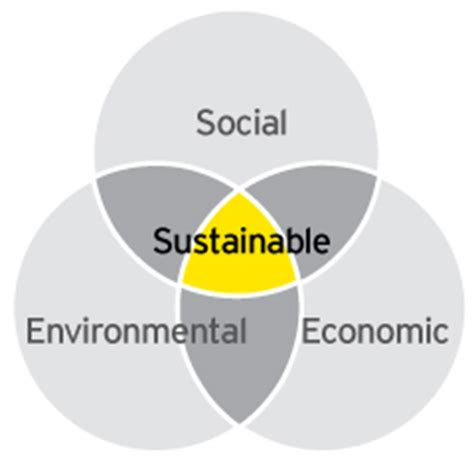 how sustainability has expanded the cfo's role ey