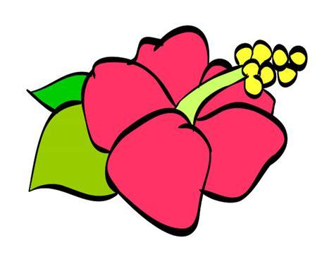 floreros para una flor dibujo de flor de lagunaria pintado por mimota en dibujos