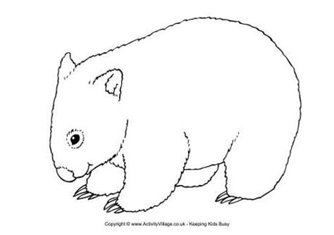 Aboriginal Australian Animal Outlines by Wombat Printables Wombat Colouring Page Wombats Yarns Wombat And Printables