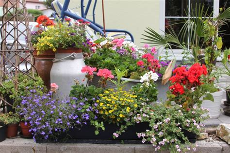 Terrasse Bepflanzen by Terrassenbepflanzung Praktische Tipps Und Kreative Ideen