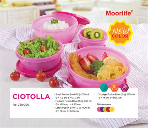 Ciotolla By Moorlife Products Gallery Creative Mega Network
