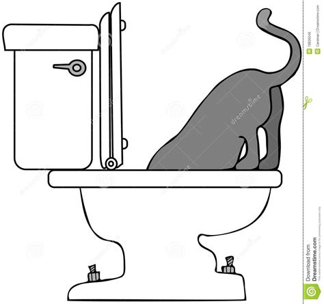 Window Seat For Cat - cat drinking from toilet royalty free stock image image 18836046
