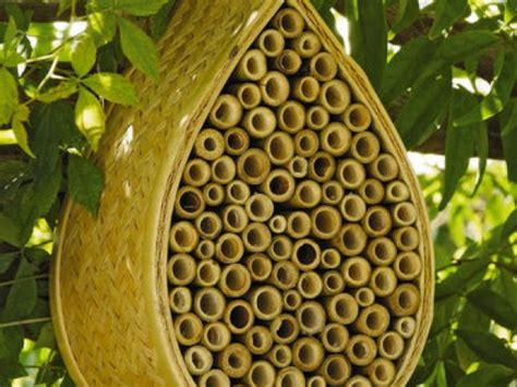 buy bee house it s time to hang up your bee house west end alexandria va patch