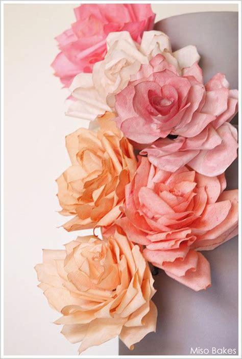 paper flower tutorial martha stewart 25 b 228 sta coffee filter roses id 233 erna p 229 pinterest