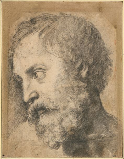 raphael the drawings file raphael head of an apostle in the transfiguration 1519 1520 google art project jpg