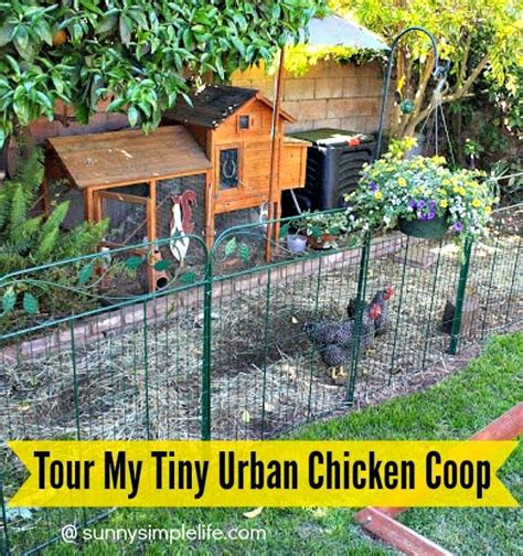 25 best ideas about small chicken coops on