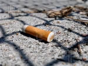 Can You Get A Class B Misdemeanor Your Record Toss Your Cigaret On The Ground Get Your Hauled