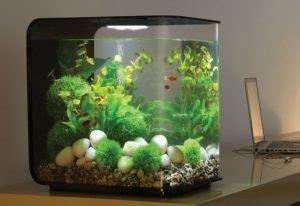 Daftar Harga Pakan Ikan Hias daftar harga akuarium ikan hias dan ukurannya terbaru