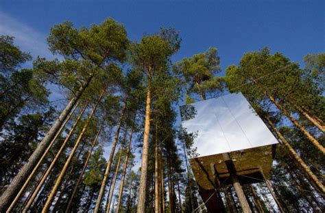 suspended swedish tree hotel reflects natural environment live your fantasy at the treehotel in sweden ecophiles