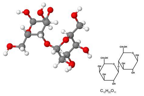 protein molecule diagram protein chemical structure 3d www pixshark images