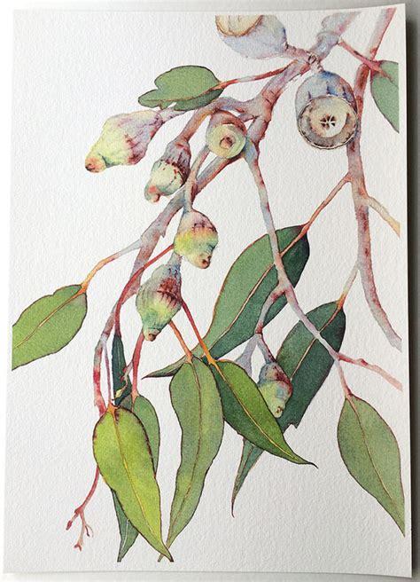 printable gum leaves eucalyptus watercolor print a4 botanical print