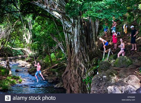 kauai rope swing kauai hawaii usa kipu falls a gigantic rope swing
