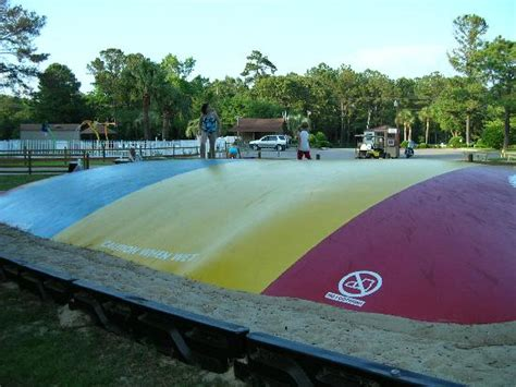 Koa Jumping Pillow by Waterpark Picture Of Myrtle Koa Kground