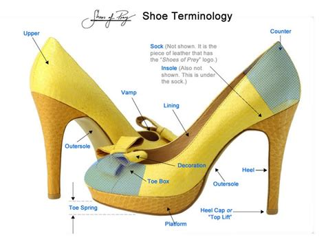 shoe school the parts of a shoe shoes of prey shoes