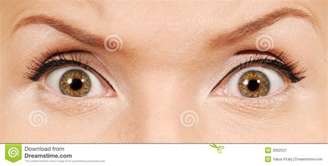 imagenes de ojos humanos mad human eyes royalty free stock photography image 3902537