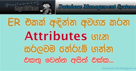 html tutorial sinhala dbms sinhala tutorial part 03 er diagram ii attributes