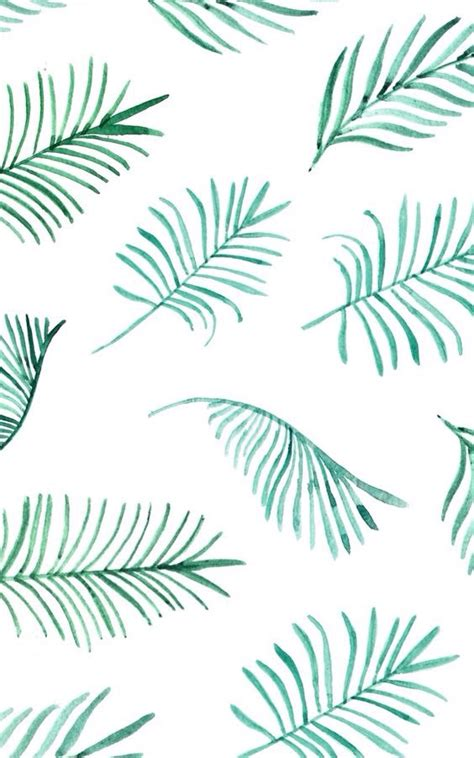 wallpaper tumblr we heart it fern we heart it wallpapers leaves picture image