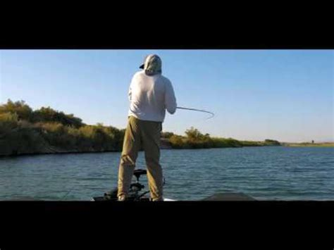yuma fishing  youtube