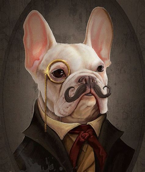 Sepatu Picboy Buldog 1 340 best animals in images on animal portraits animales and commercial