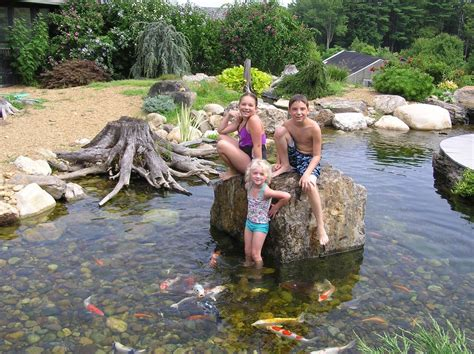 fish koi pond project photos ideas nh chester