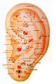 auricular acupuncture treating the ears toronto