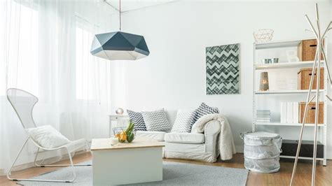 7 home decor trends of 2017 decorist everything you need to know about the bugs living at your