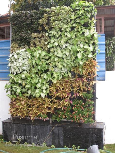 Home Gardening India: Benefits of a Vertical Garden