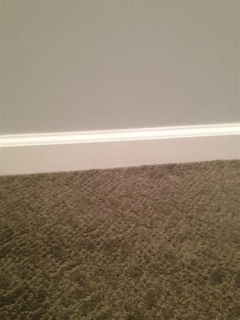 best carpet for light grey walls carpet vidalondon
