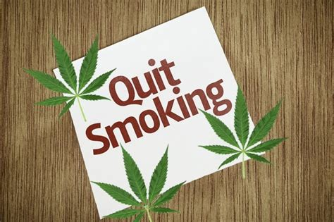 Marijuana Detox For Occasional Smoker by Marijuana Detox A Guide To Quitting Quit Easy