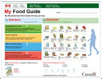 printable version canada s food guide food and drinks interactive activities esl resources