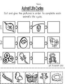 free printable animal life cycle worksheets quot free quot animal cut paste activities rachelle rosenblit