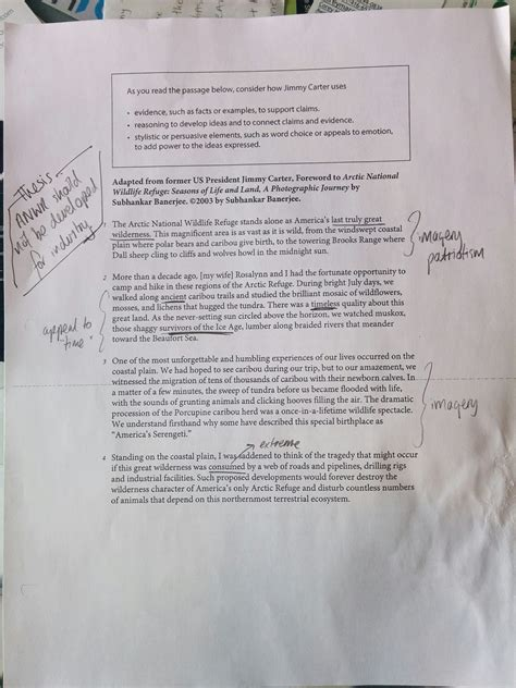 Sat Essay Introduction Exles by Sat Essay Introduction Exles Bamboodownunder