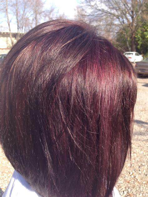 mahogany violet hair color mahogany violet and mocha brown hair